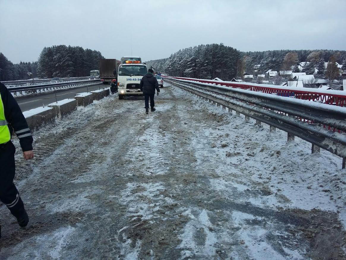 Екатеринбург попали лошади: ВДТП на337км автодороги Пермь