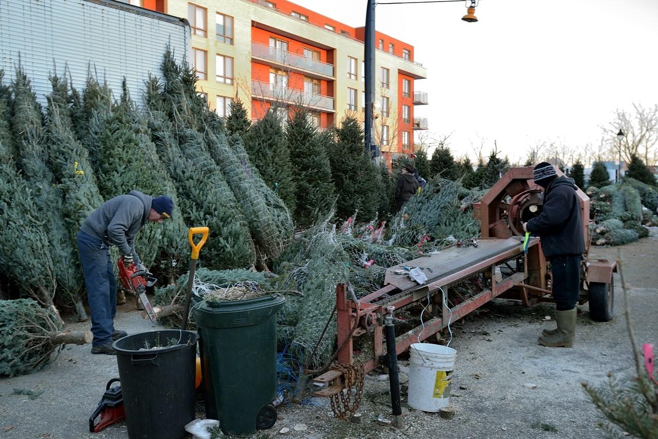 ВЧелябинске открылось 180 новогодних ёлочных базаров