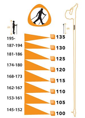 Скандинавская ходьба с палками - для детей и подростков