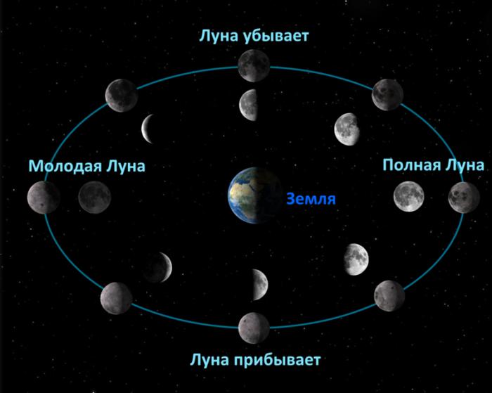 Что означают убывающие и возрастающие фазы луны фото