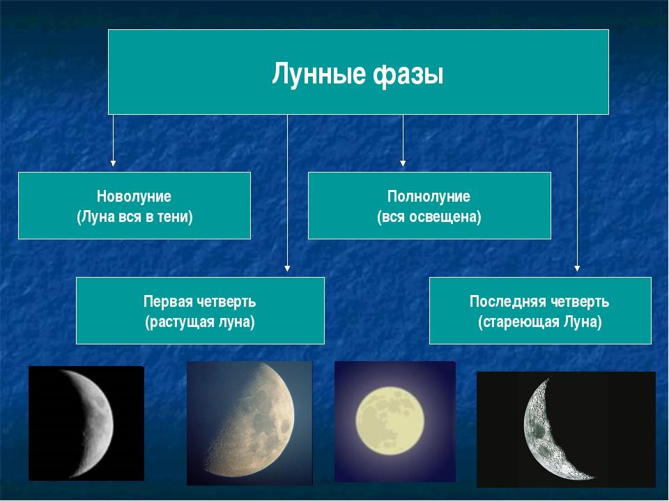Преимущества и недостатки различных лунных фаз фото