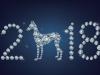 2018 год какого животного? Готовимся правильно к Новому году