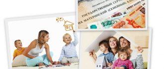 Материнский капитал в 2019 году размер и изменения фото